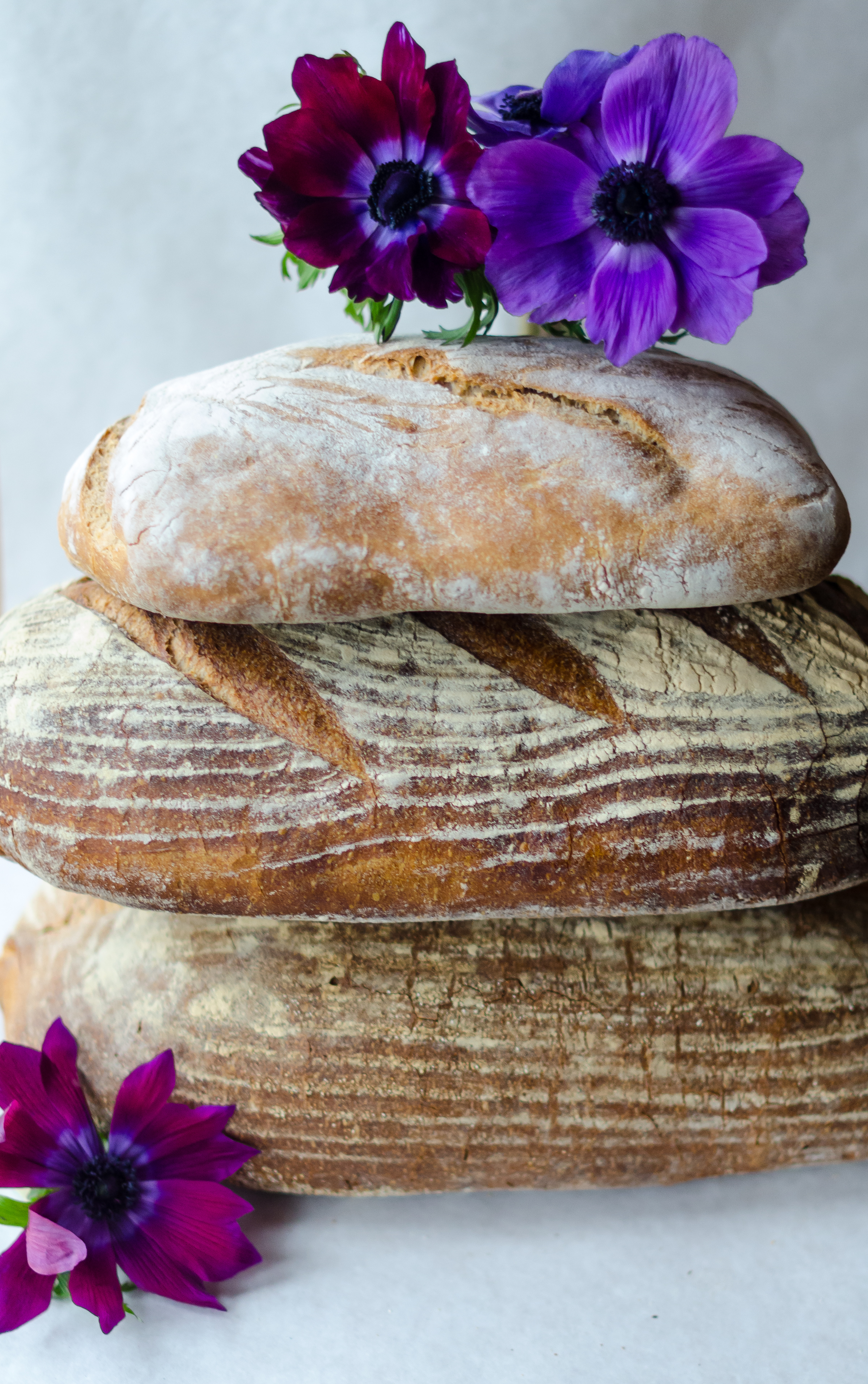 Traditional Parbaked Loaves